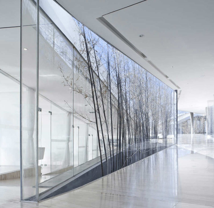 Architectural Printed Glass